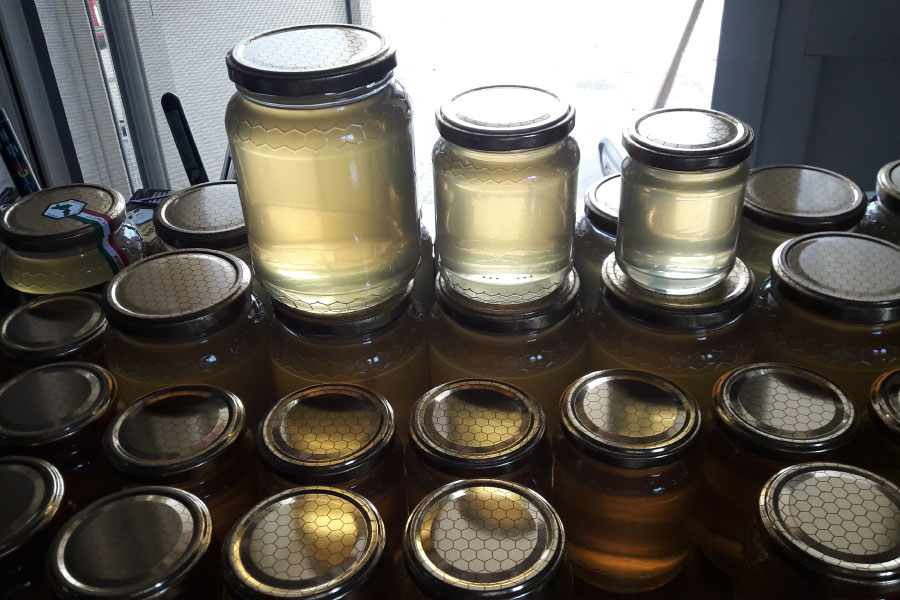 Produzione miele in Calabria